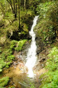 雨天の日が多く、水量の豊富な上段の滝