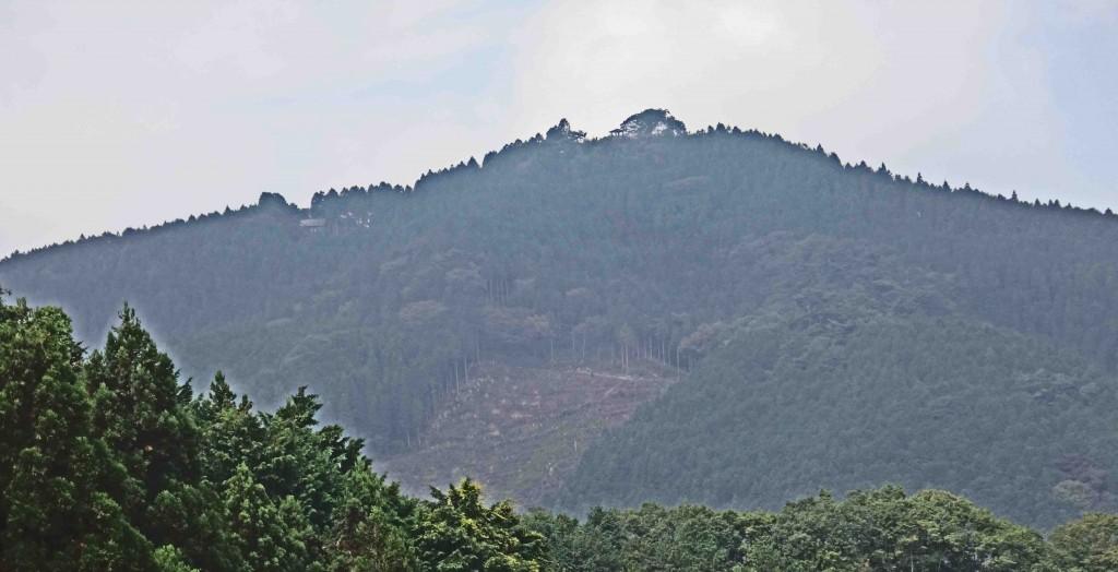麻生山林道から日の出山山頂。山頂の東屋と左の尾根の樹間に、東雲山荘が見える。