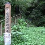 今日の白岩の滝コースの登山口