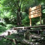 栗田工業が植樹した麻生平四季の森の休憩ポイント