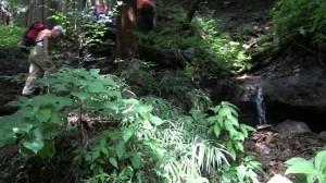 白岩の滝の源流に突然湧き出す水口