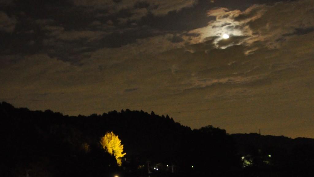 十五夜お月さん雲の陰・・・群雲から見え隠れする満月と天正寺大銀杏の遠望