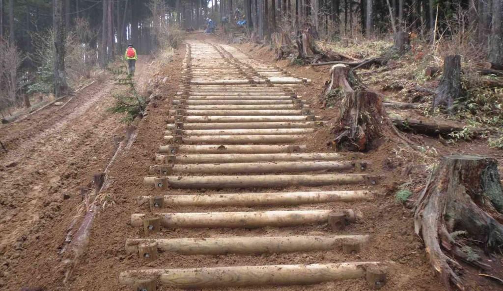 クロモ岩から上の登山道の階段も、新しい丸太に改修されました。