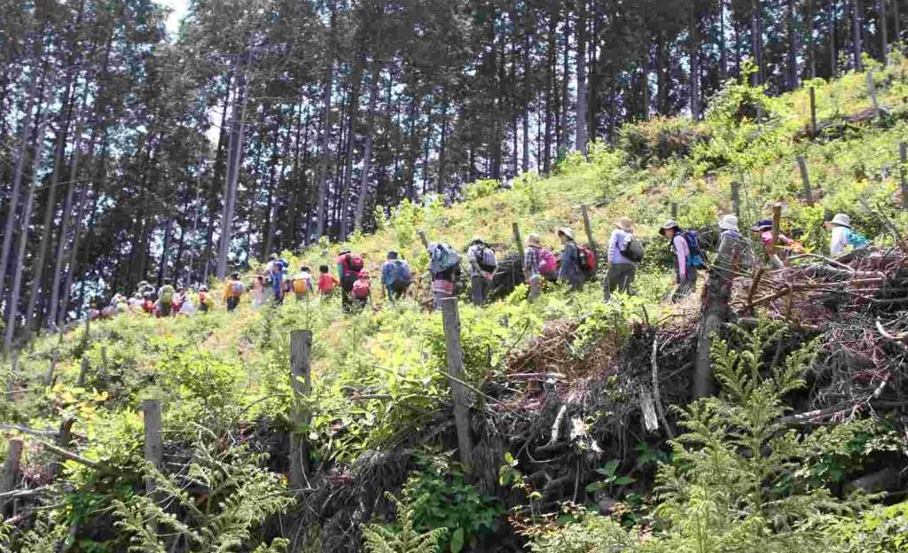 伐採が終わった斜面を麻生山へ向かいます。