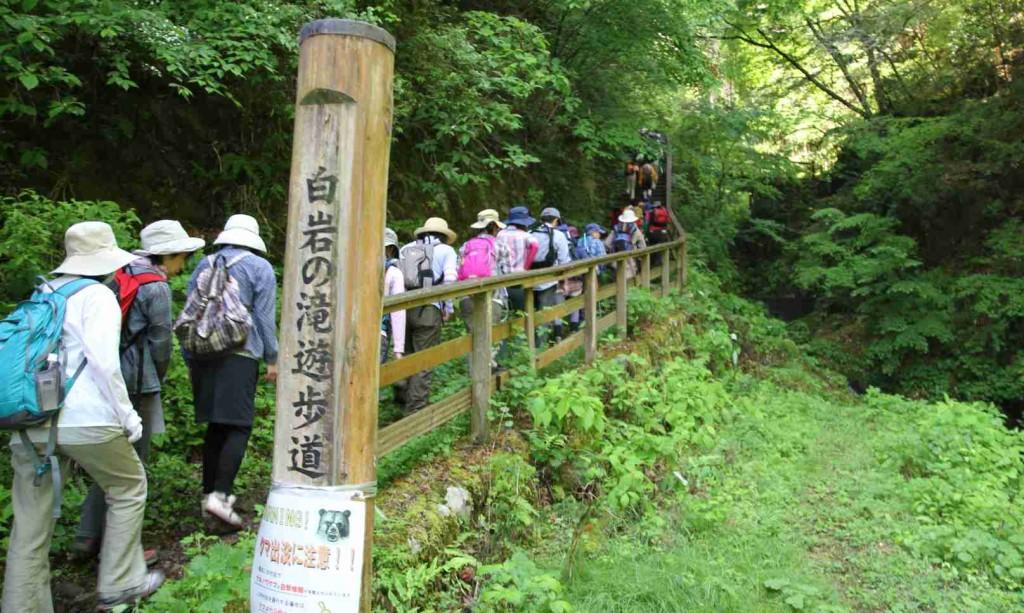トイレを過ぎればすぐに山道に入る。沢沿いの道は日陰で夏でも涼しい登山ができる。
