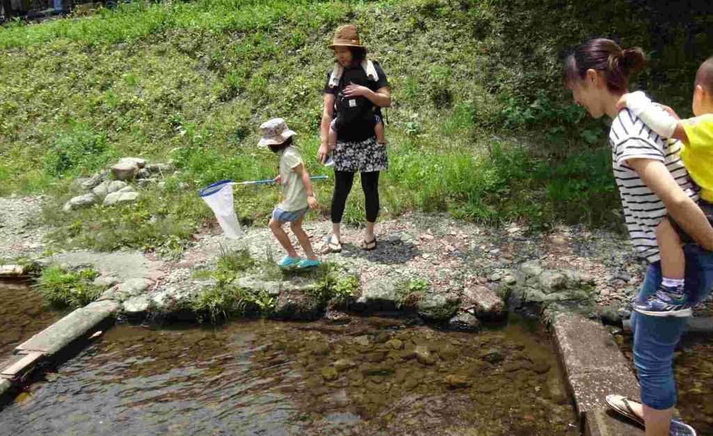 小さな子供には、釣りより鱒のつかみ取りが楽しそう。