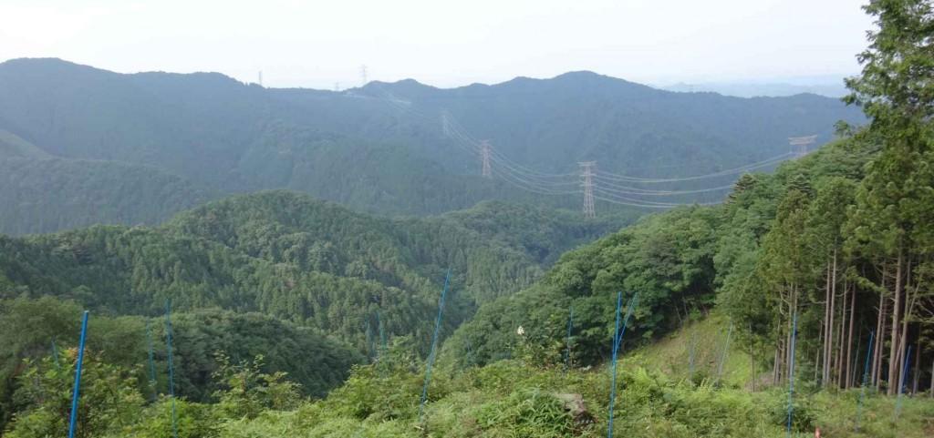 今日の最終ピーク麻生山794mは以前に設置済だ。ここで 遅い昼食をとる。眺望は現在北側のみだが、右手の東側の植林がこの冬景観のための伐採が決まっているので、都心への眺望が期待される。