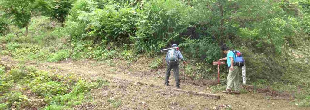 昨日の勝峰山草刈り整備事業で、すっかりきれいになった勝峰山園地を、山頂へと辿ります。