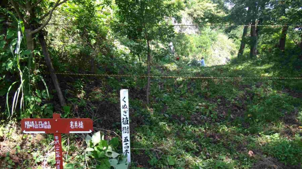 現在は安全管理上立ち入り禁止となっている勝峰高原への道沿いに、クヌギを植林しましたので、その下草狩りも実施します。