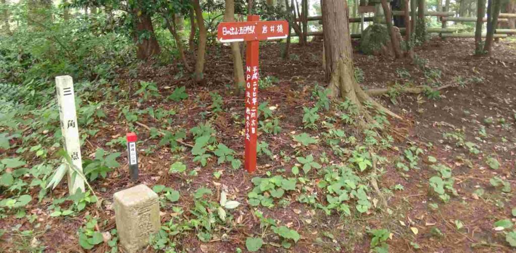 今日最初のポイント勝峰山山頂454.3m。三等三角点と榛名神社の小さな祠があり、山桜の巨木で覆われています。