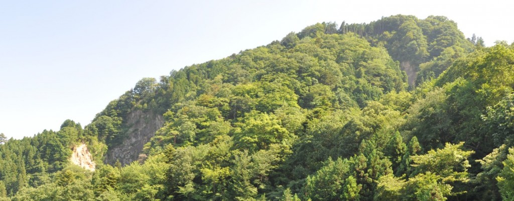 林道の途中から白岩山の崩落現場が見える(右と左の2か所)。白岩の滝登山口の左に閉鎖されたトンネルがあり、このトンネルから砕石を掘り出していたが、崩落事故で閉鎖された。