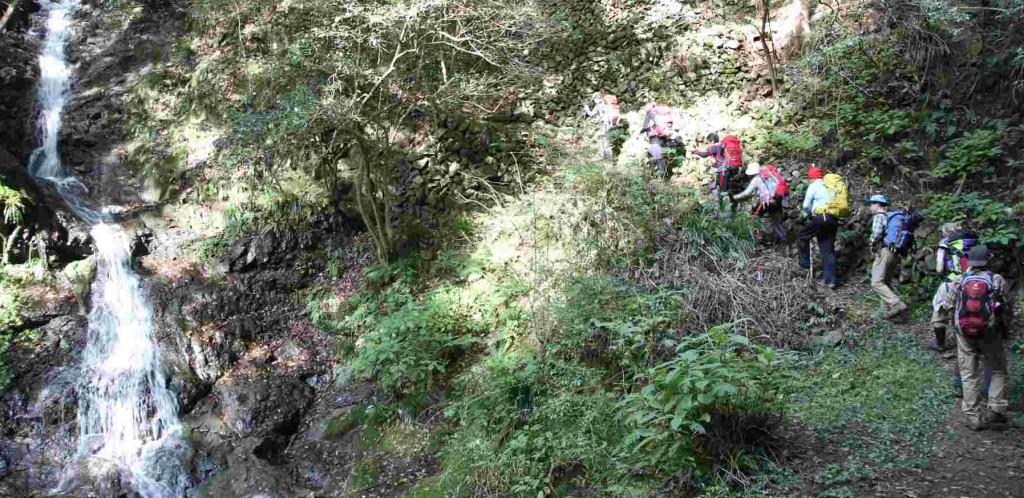 白岩上段の滝の脇をを急登すると、滝上からは緩やかな沢沿いの道になる。