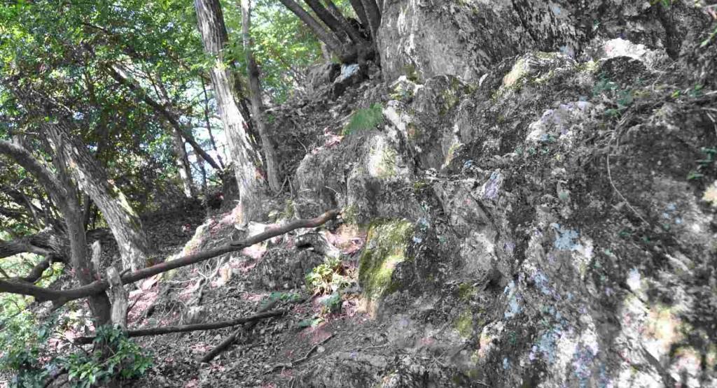 しばらくは足場の悪い岩場の尾根道が続く。踏み跡がたくさんあるので、尾根を外さぬよう、要注意。