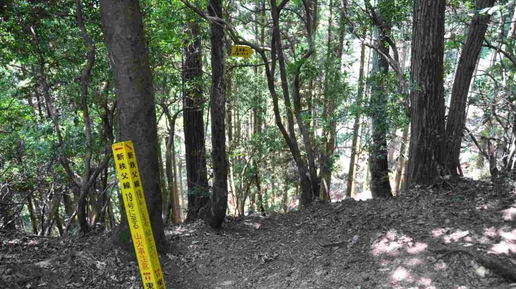 標高700m標識を過ぎるとすぐに金毘羅尾根から麻生山への一般ルートに出る。左へ下ると金毘羅尾根経由五日市。直進して登ると一般道で麻生山山頂だ。