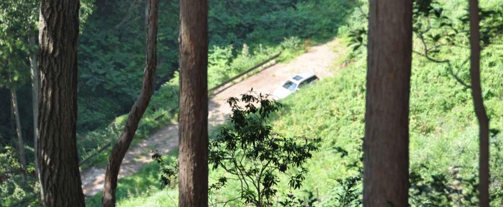 大岩を越えたところで尾根の反対側が見え、タルクボ林道の終点が見える。