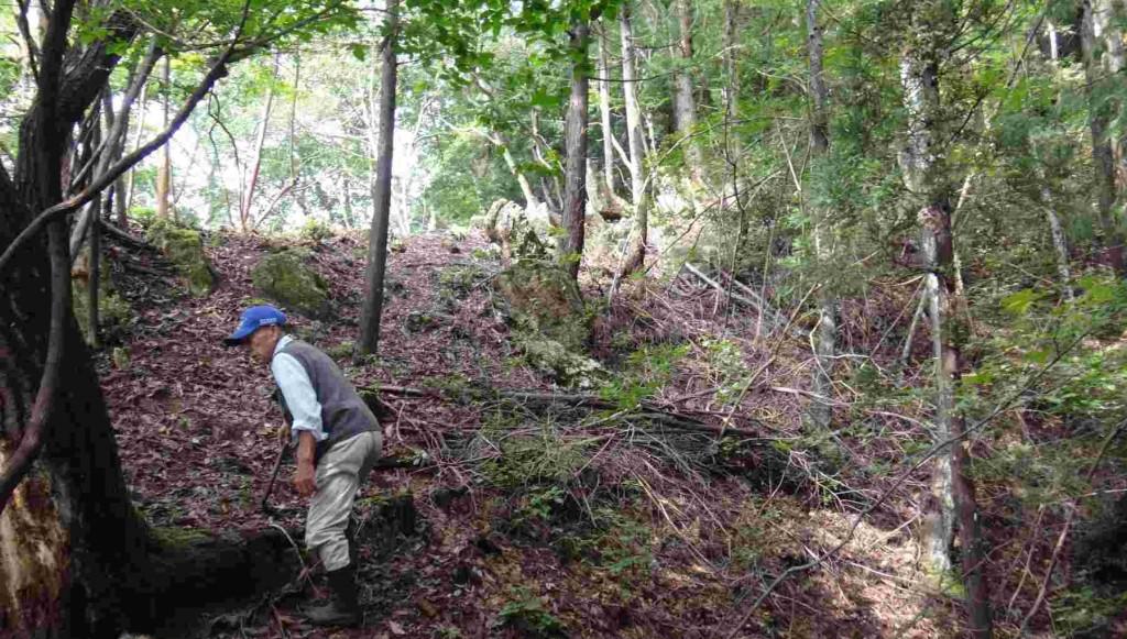 大岩の右をヘツリながら回り込むと、尾根に出る。林道からここまでの標高差は50mほど。