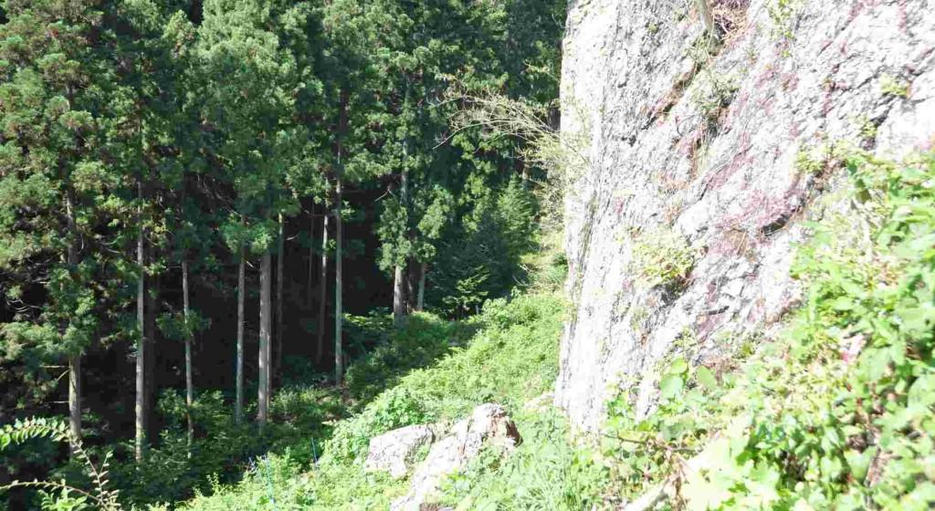 梯子の上は狭い棚状になっていて大岩が迫っている。大岩に沿って右に回り込み、踏み跡を辿り尾根に向かって登る。尾根に出るまで分かりにくい踏み跡で、要注意だ。