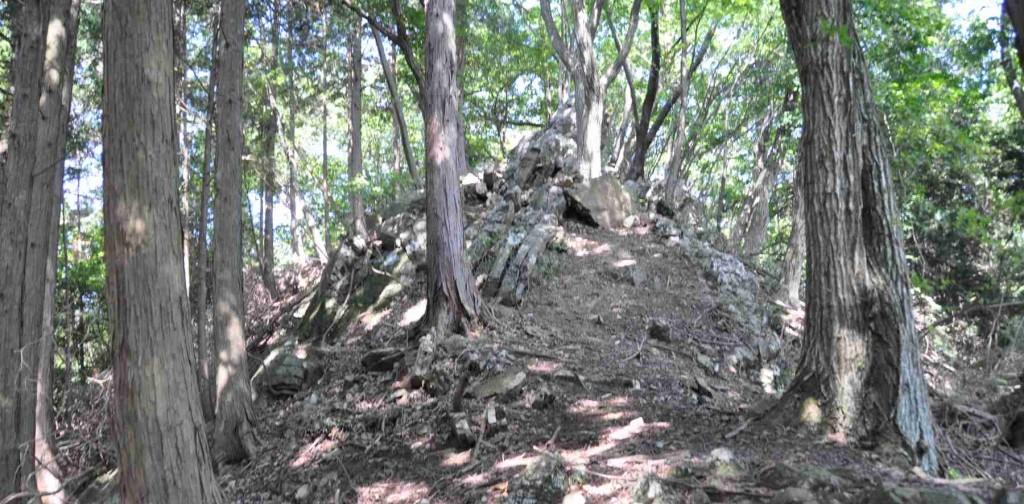 しばらくは岩尾根が続くが、この辺の踏み跡は比較的しっかりしている。
