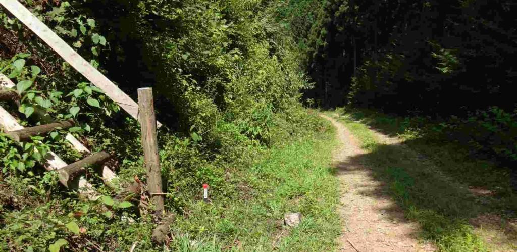 大岩の下に作業用の梯子がかかっていて、標高500mの標識がある。ここが麻生山への尾根のとりつきだが、道標は無く、踏み跡程度の道のため、熟達者以外は入山禁止だ。