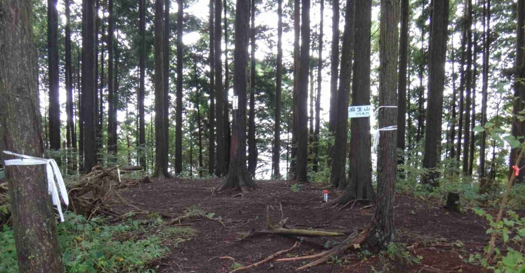 現在の麻生山山頂794mは、針葉樹に包まれ、北西のごく一部以外は、視界がきかない。