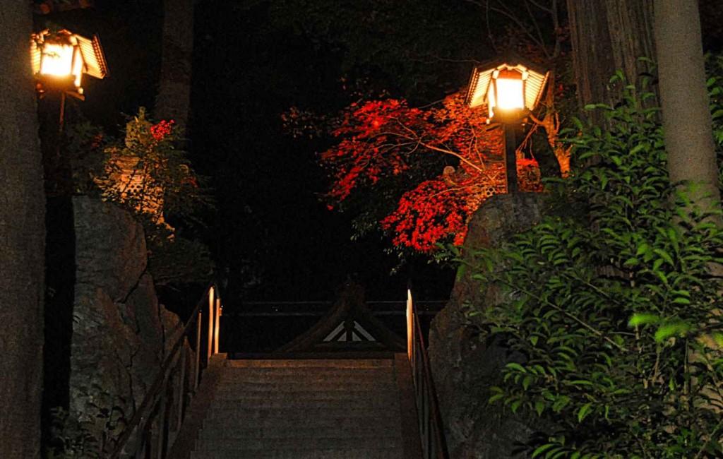 新井地区の山上の白山神社は、武蔵野台地から都心が見渡せるため、元旦の御来光スポットにもなっていて、初もうで客で賑わう。