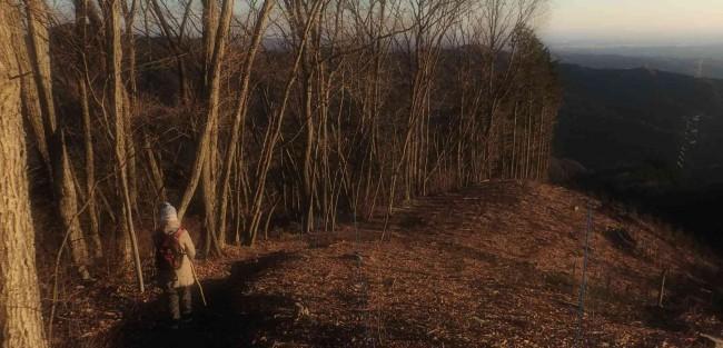 柔らかな朝日浴びながら、霜柱の立つ道を家路につきました。
