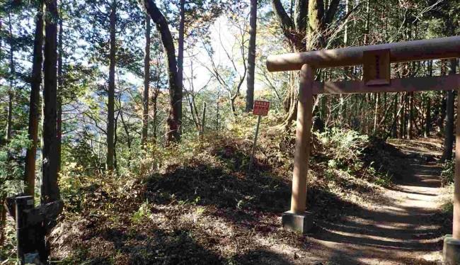 御岳山と日の出山の尾根の中間に有る一の鳥居。昔は日の出町から日の出山を通って御岳神社へ辿る道が、表参道で、たくさんの石碑の道標が残っています。