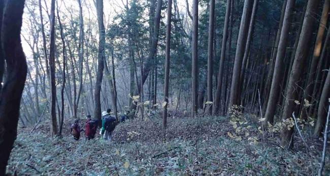 すっかり葉が落ちた明るい雑木の森を、深い落ち葉に足をとられながらの下山でした。