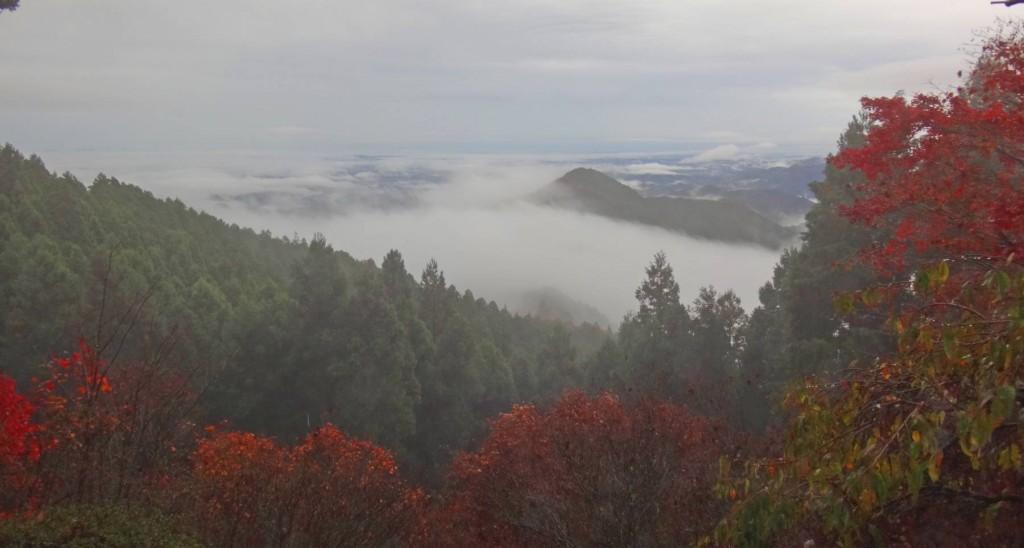 翌朝は雨も上がり、東雲山荘のベランダから見る景色は、雲海の白と紅葉のコントラストが素晴らしい夜明けでした。