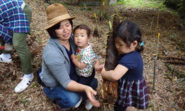 寺山竹の子園の竹の子は、豊作の年はこんなに大きくても、柔らかくておいしいので有名だ。
