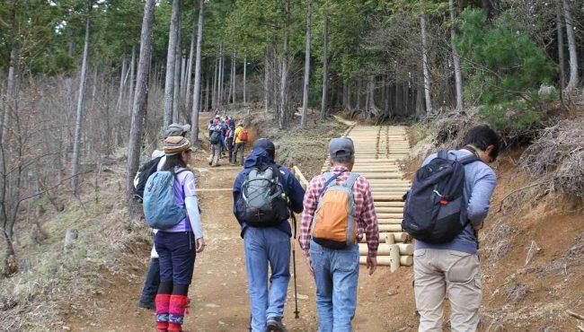 日の出山への登山道は3年前から整備が進み、丸太による階段も整備された。