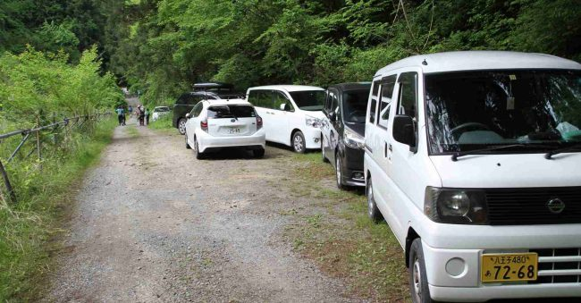 隊列を組んでの幼児の車道歩きは危険なため、白岩の滝登山口まで車で移動。