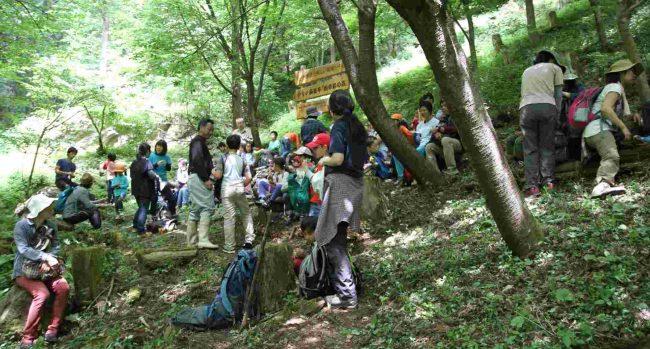 タルクボ林道を超え、タルクボ沢の水源を過ぎると四季彩の森のベンチへ出る。ここは標高550m地点だ。