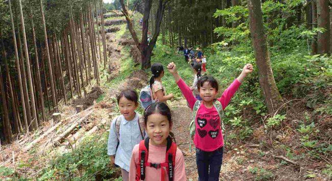 麻生山から日出山への麻生尾根(金毘羅尾根)は、ピークを巻きながらのアップダウンの少ない道で、子供たちも笑顔で歩く。