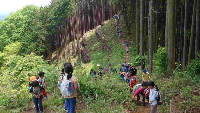 急な登りもあるけれど、子供たちは平らな道より楽しそうだ。