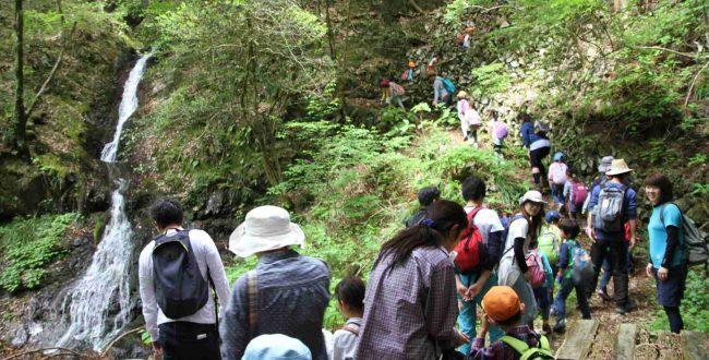 最上段の滝も含めて白岩の滝と呼び、ここは滝の飛沫によるマイナスイオンが充満していて、夏の暑さで消耗した体の癒し場所として最適だ。