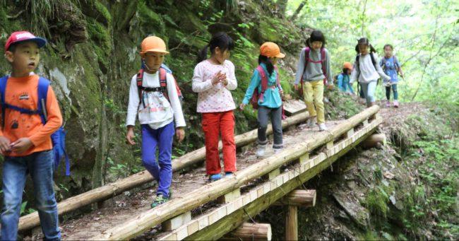 昨年秋に一時通行止めだった最上段の滝の橋も架け替えられ、安心して渡れるようになった。