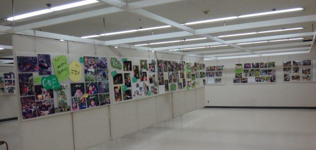ゆったりとした空間は、膨大な数に写真に取り囲まれています。