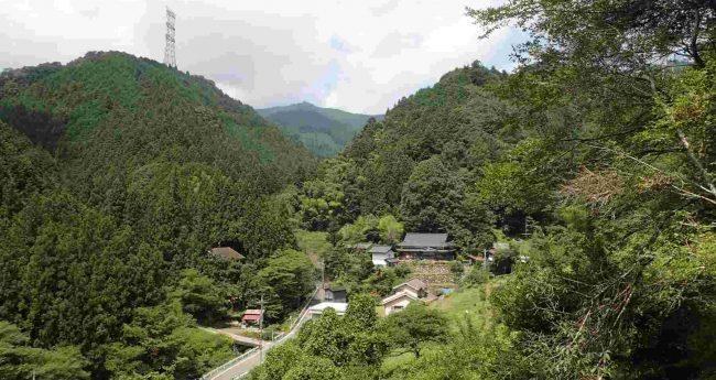 学校林作りの現場はつるつる温泉と日の出山登山道入り口の三ツ沢の斜面で、植林地へ登ると滝本の先に日の出山の山頂が見えてきます。